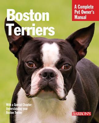Boston Terriers By Bulanda, Susan